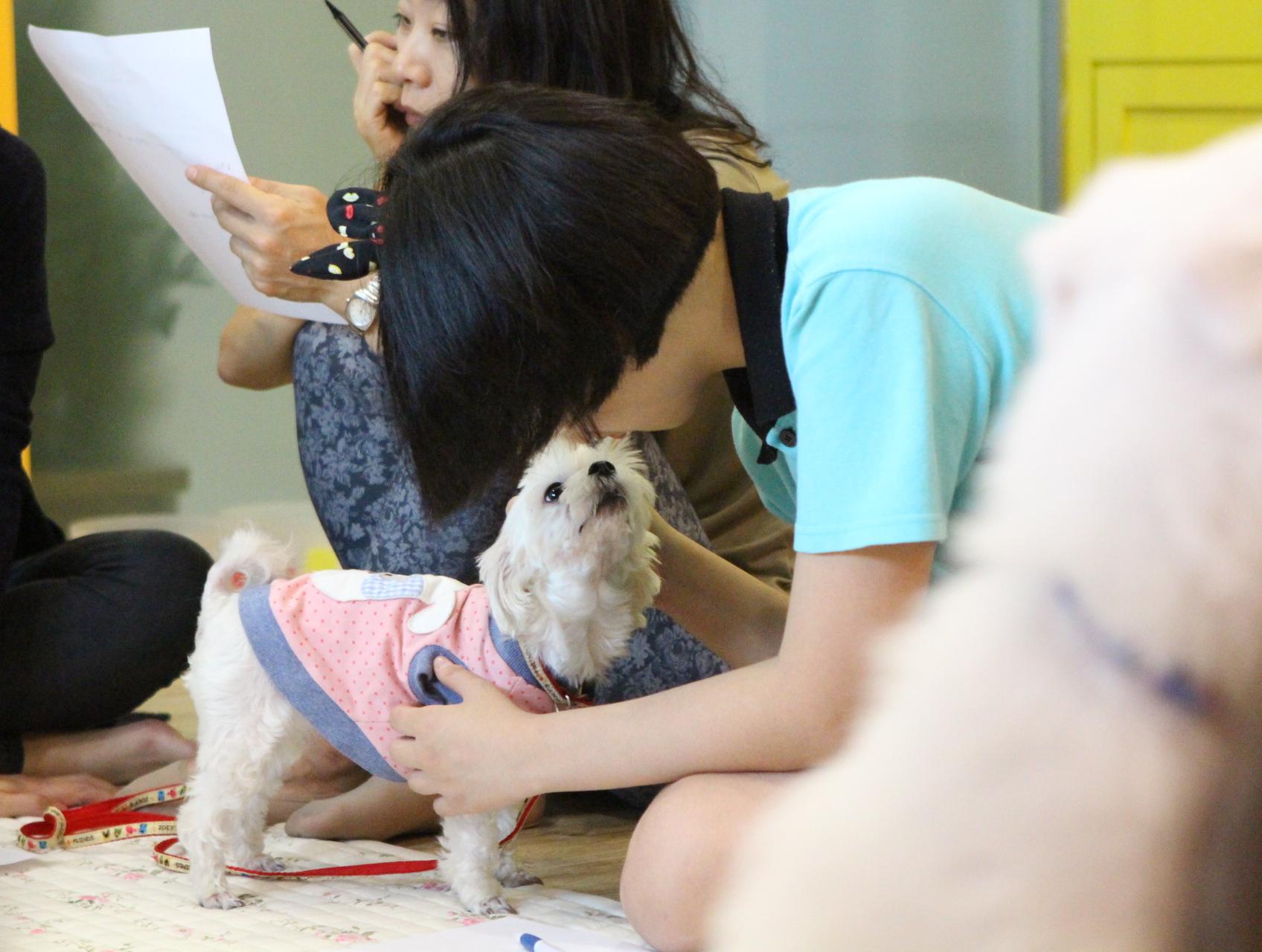 동물보조치료 한국HAB협회