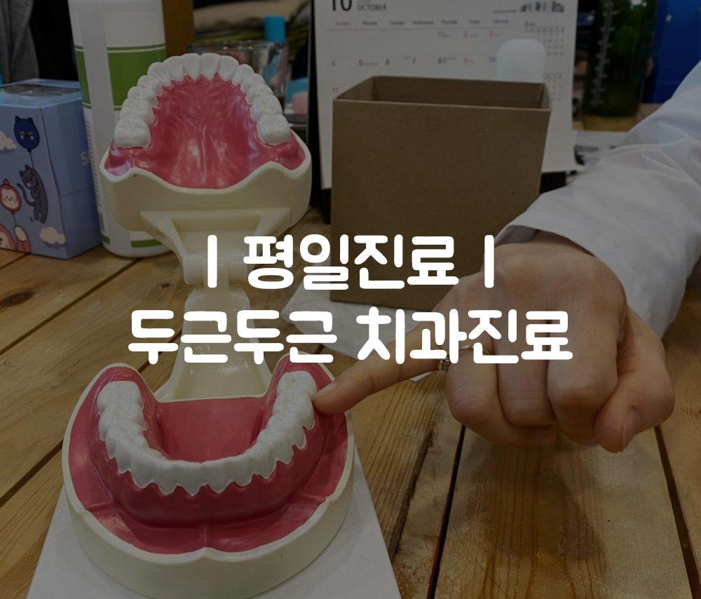 [평일진료] 두근두근 치과진료!