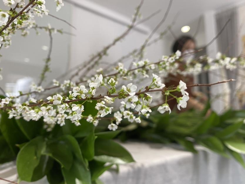 [진료후기] 봄봄봄봄, 봄이 왔어요